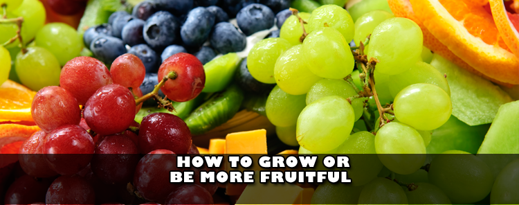 How to Grow or Be More Fruitful [video/sermon]